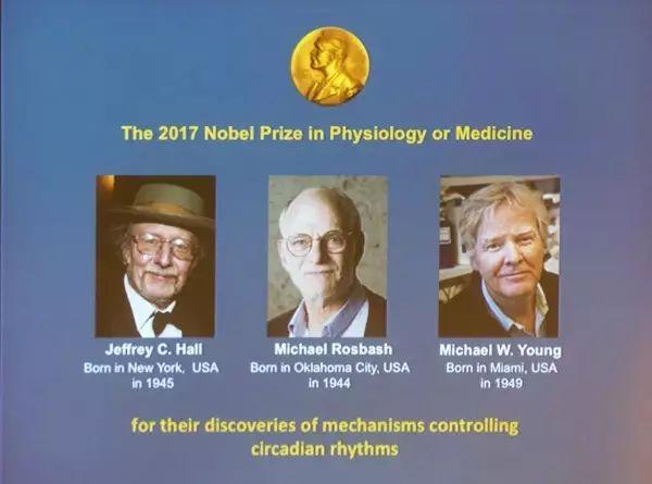 這個諾貝爾醫學獎健康忠告只有四個字:價值
